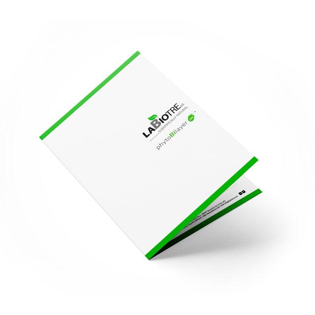 download phytobilayer brochure